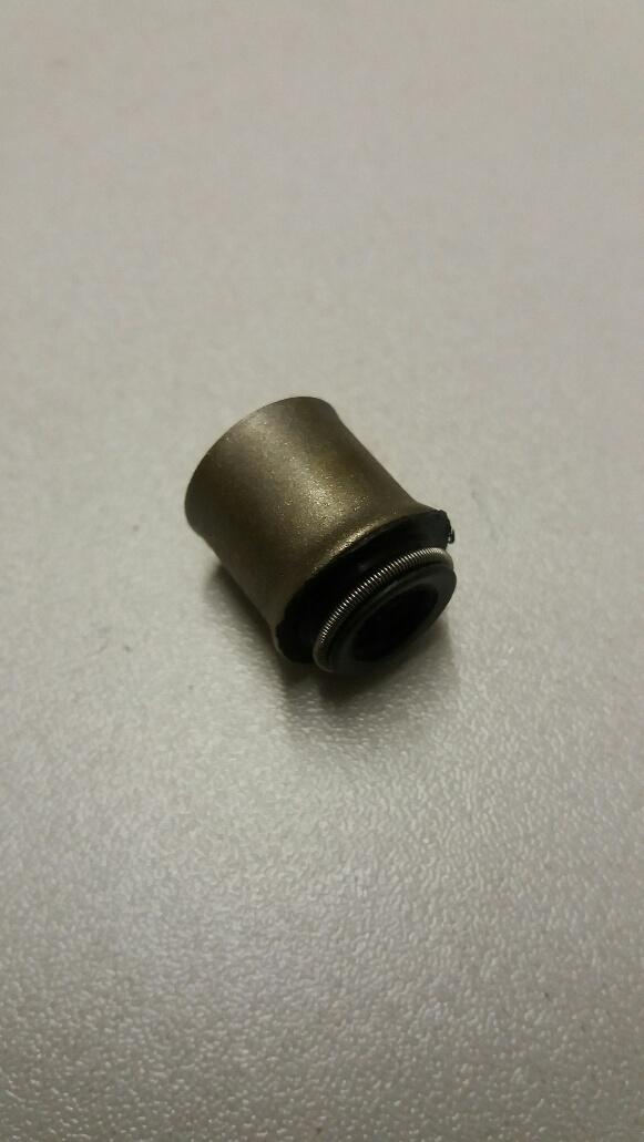 Nissan Cherry & Sunny valve stem seals