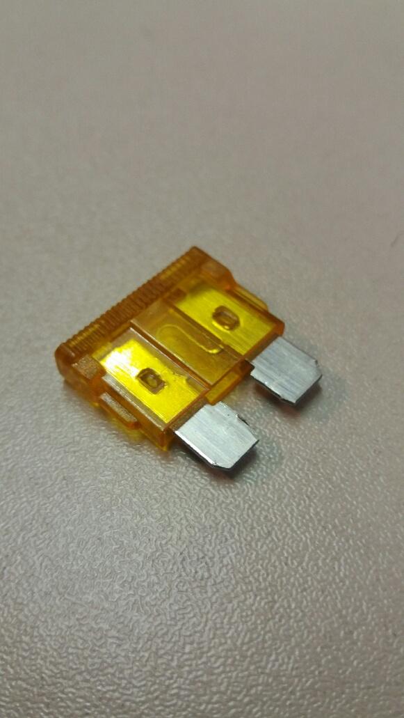 5 amp standard blade fuse